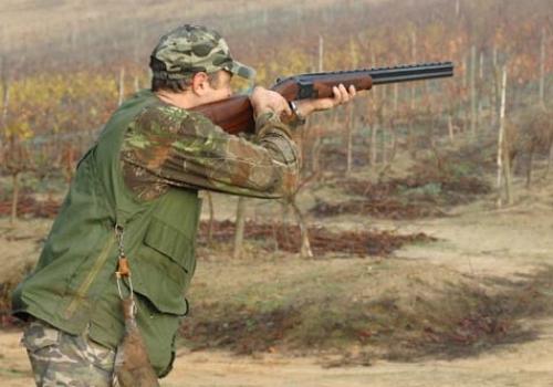 cazando